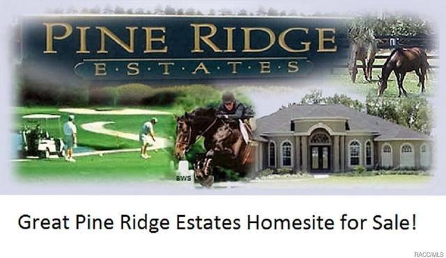 4739 W Hacienda Drive, Beverly Hills, FL 34465 (MLS #775945) :: Plantation Realty Inc.