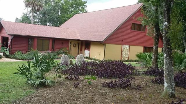 1471 Lagoon Point, Inverness, FL 34453 (MLS #775994) :: Plantation Realty Inc.