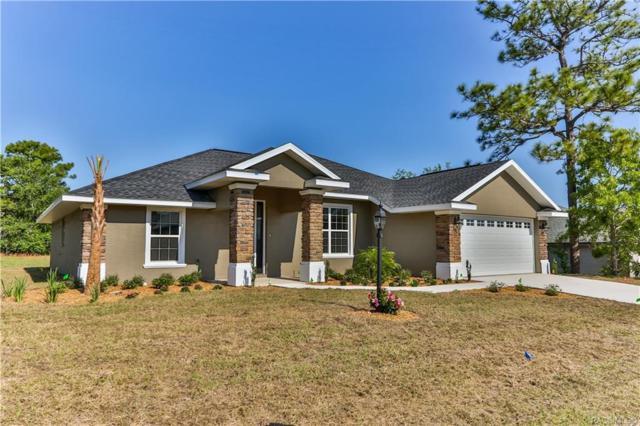 6190 N Silver Palm Way, Beverly Hills, FL 34465 (MLS #776093) :: Plantation Realty Inc.