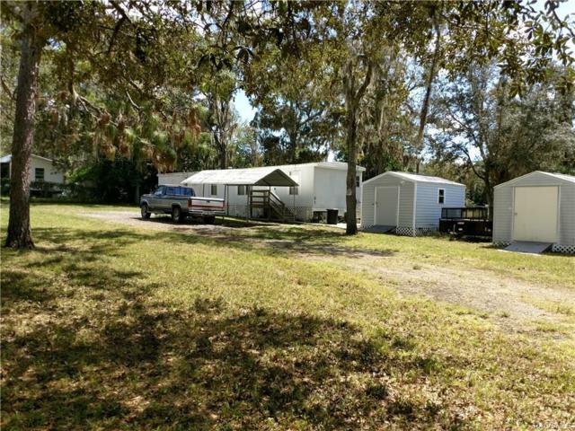 6522 SW Erlen Lane, Homosassa, FL 34446 (MLS #776333) :: Plantation Realty Inc.