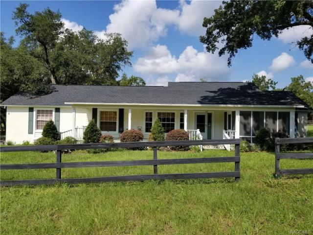 6970 S Lecanto Highway, Lecanto, FL 34461 (MLS #776376) :: Plantation Realty Inc.