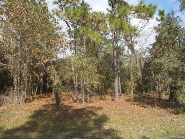 93 E Reehill Street, Lecanto, FL 34460 (MLS #776417) :: Plantation Realty Inc.