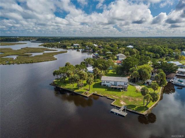12504 W Battlecreek Drive, Homosassa, FL 34448 (MLS #776651) :: Plantation Realty Inc.