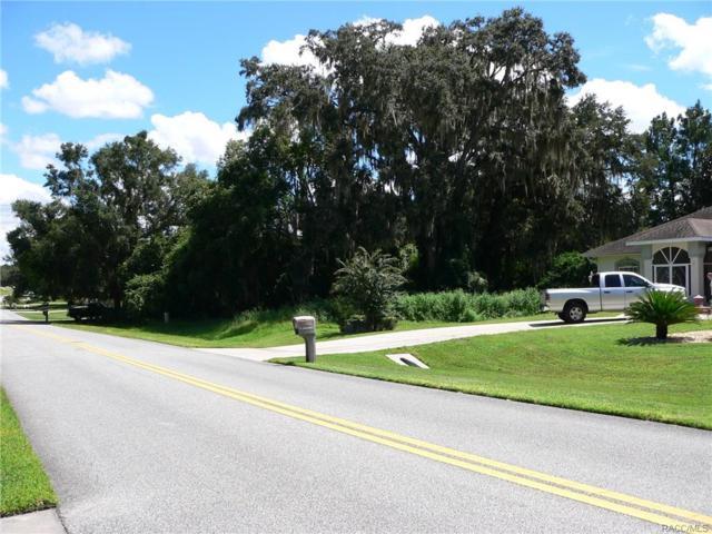 2834 N Canterbury Lake Drive, Hernando, FL 34442 (MLS #776737) :: Plantation Realty Inc.