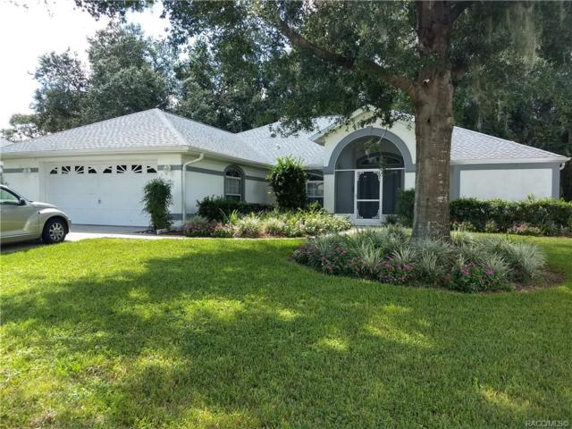 3664 E Hidden Cove Trail, Hernando, FL 34442 (MLS #776773) :: Plantation Realty Inc.