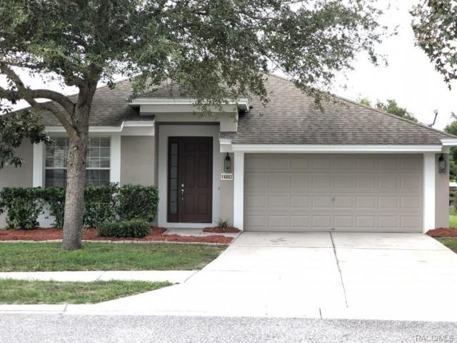 14993 Red Bloom Place, Brooksville, FL 34604 (MLS #776880) :: Plantation Realty Inc.