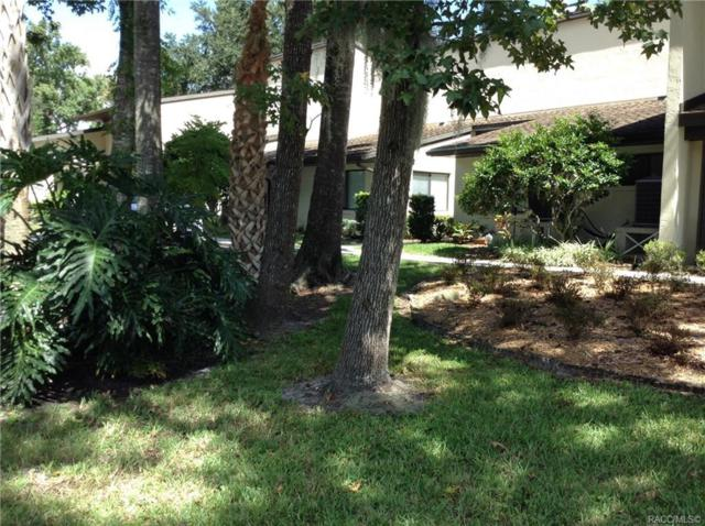1637 SE Paradise Circle #206, Crystal River, FL 34429 (MLS #776950) :: Pristine Properties