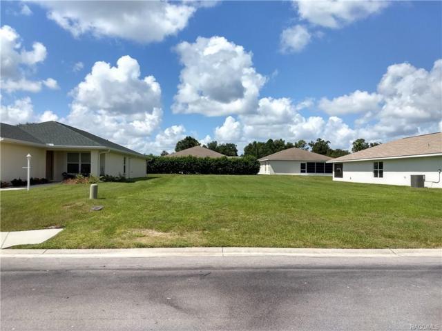 4570 N Webster Island Terrace, Hernando, FL 34442 (MLS #777012) :: Plantation Realty Inc.