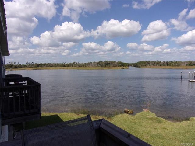 2855 N Rivers Edge Boulevard, Crystal River, FL 34429 (MLS #777416) :: Plantation Realty Inc.