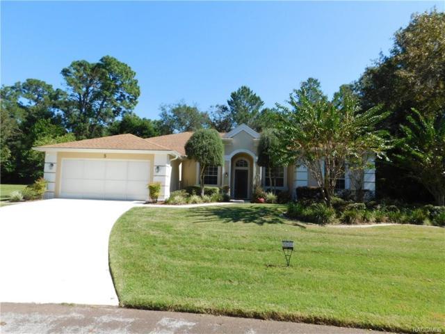 5 Chinkapin Court, Homosassa, FL 34446 (MLS #777562) :: Plantation Realty Inc.