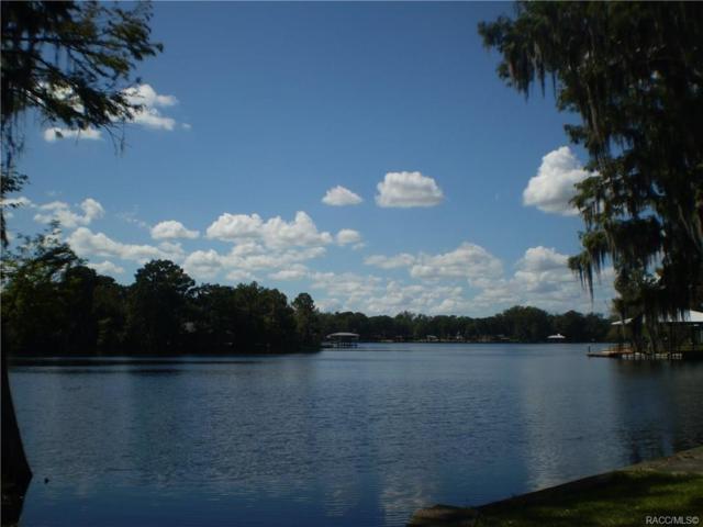 7050 S Duval Island Drive, Floral City, FL 34436 (MLS #777684) :: Plantation Realty Inc.