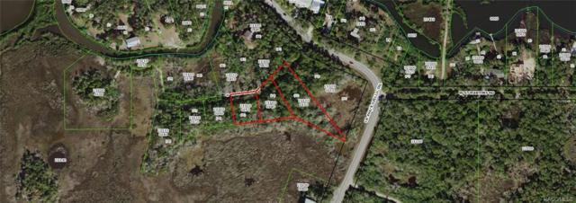 11440 W Stone Island Drive, Crystal River, FL 34429 (MLS #777691) :: Plantation Realty Inc.