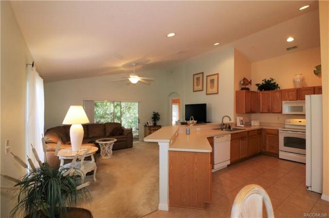 10419 S Drew Bryant Circle, Floral City, FL 34436 (MLS #777721) :: Plantation Realty Inc.