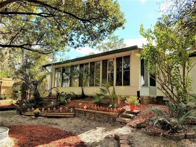 8089 E Skyline Lane, Floral City, FL 34436 (MLS #777985) :: Plantation Realty Inc.