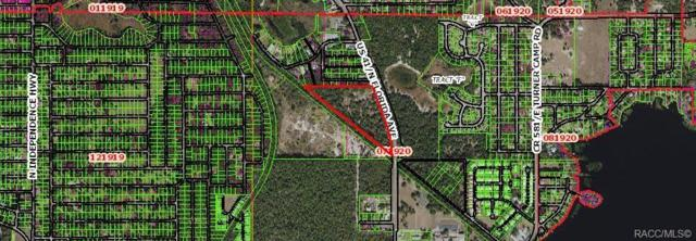 2001 Highway 41 N, Inverness, FL 34453 (MLS #778211) :: Pristine Properties