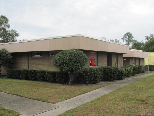 306 S Line Avenue, Inverness, FL 34452 (MLS #778476) :: Plantation Realty Inc.
