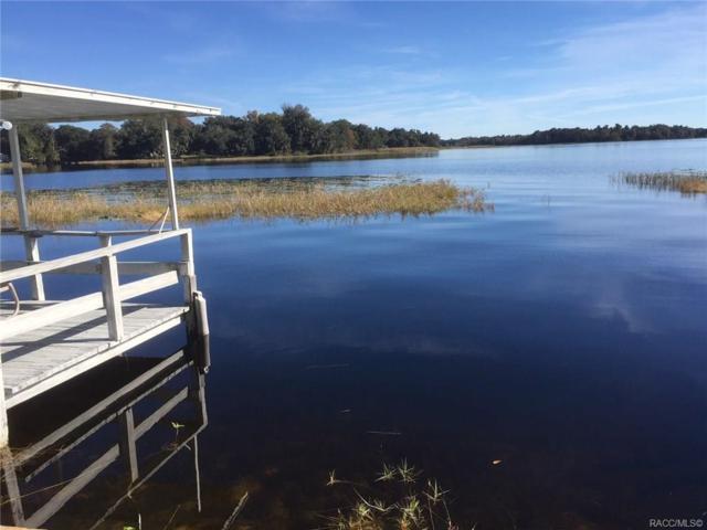 4010 E Lake Park Drive, Hernando, FL 34442 (MLS #778556) :: Pristine Properties
