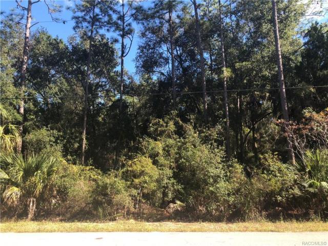 4599 N Williams Avenue, Crystal River, FL 34428 (MLS #778563) :: Plantation Realty Inc.