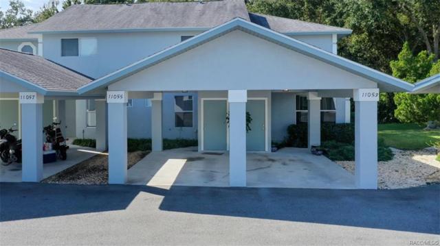 11053 W Harbor Watch Loop, Crystal River, FL 34428 (MLS #778615) :: Pristine Properties