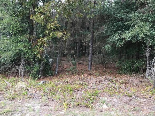 1403 E Mckinley Street, Hernando, FL 34442 (MLS #778787) :: Plantation Realty Inc.