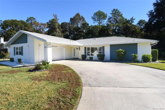 9 Wild Olive Court, Homosassa, FL 34446 (MLS #778830) :: Plantation Realty Inc.