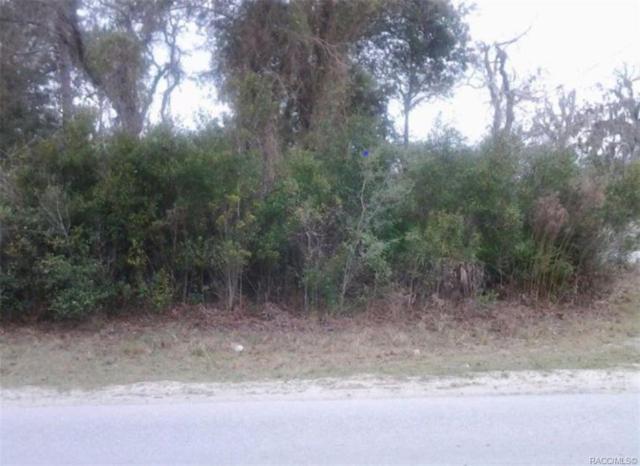 Crystal River, FL 34428 :: Plantation Realty Inc.