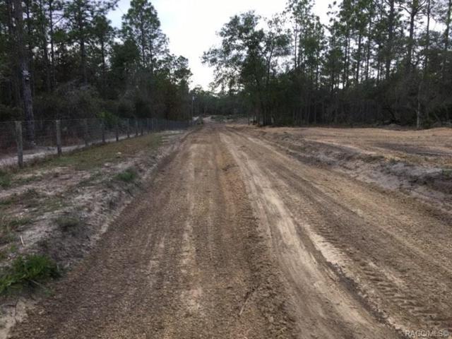 6604 N Khyber Avenue, Dunnellon, FL 34433 (MLS #778917) :: Plantation Realty Inc.