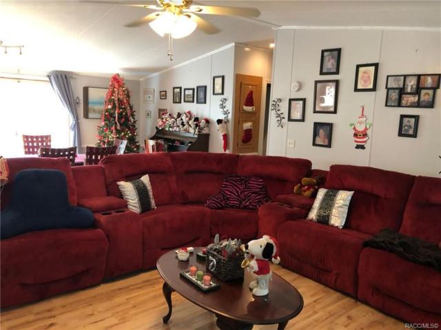 2086 N Dexter Point, Hernando, FL 34442 (MLS #779014) :: Pristine Properties
