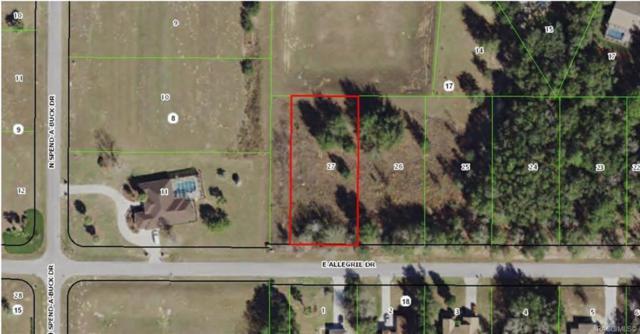 1429 E Allegrie Drive, Inverness, FL 34453 (MLS #779059) :: Plantation Realty Inc.