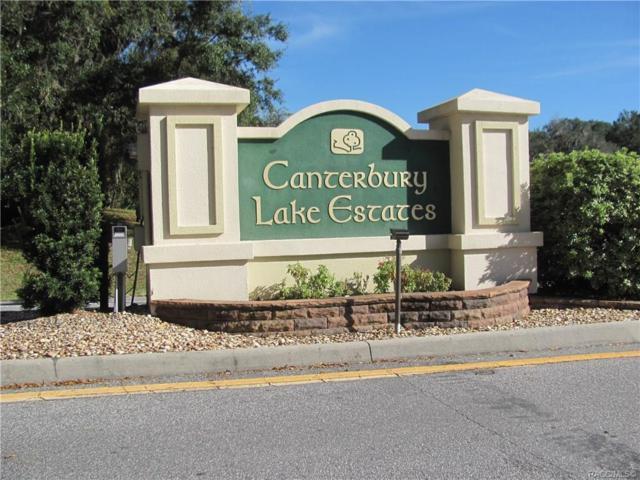 3392 N Canterbury Lake Drive, Hernando, FL 34442 (MLS #779076) :: Pristine Properties