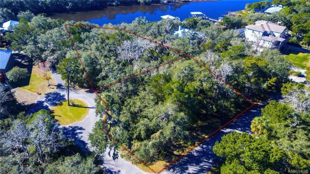 6924 S Haulover Point, Homosassa, FL 34448 (MLS #779423) :: Plantation Realty Inc.
