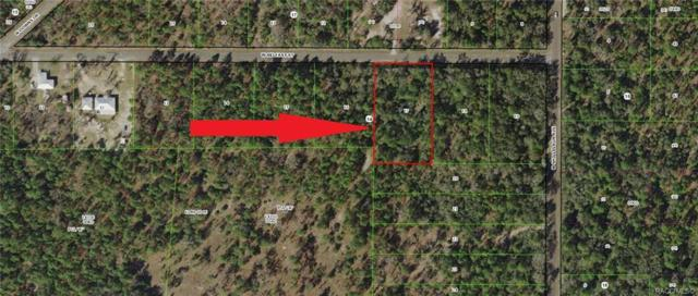 10246 W Belfast Street, Crystal River, FL 34428 (MLS #779568) :: Plantation Realty Inc.