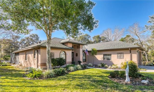 26 Balsam Street, Homosassa, FL 34446 (MLS #779598) :: Plantation Realty Inc.