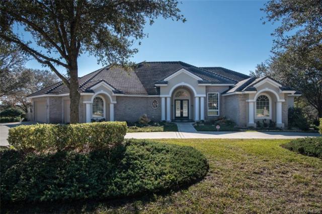3601 N Pine Valley Loop N, Lecanto, FL 34461 (MLS #779805) :: Plantation Realty Inc.