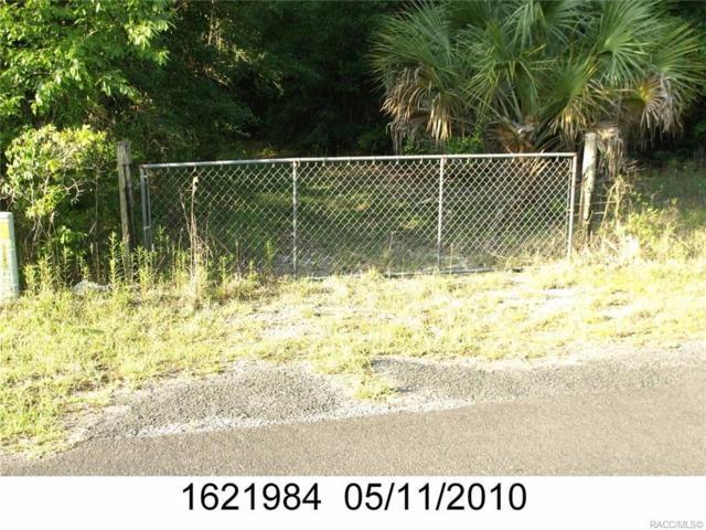 1462 E Amberjack Drive, Hernando, FL 34442 (MLS #779842) :: Plantation Realty Inc.