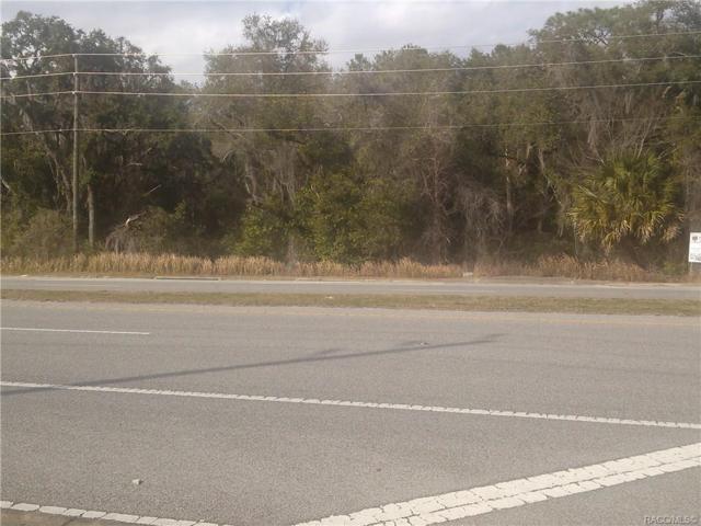 1435 E Norvell Bryant Highway, Hernando, FL 34442 (MLS #779845) :: Pristine Properties