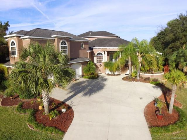 11537 W Dixie Shores Drive, Crystal River, FL 34429 (MLS #779935) :: Plantation Realty Inc.