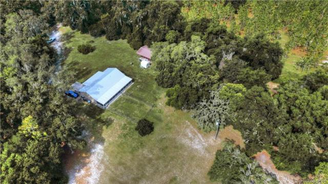 36137 Gresham Road, Webster, FL 33597 (MLS #780032) :: Pristine Properties