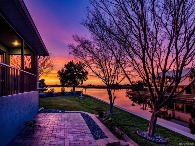 11905 W Sunnybrook Court, Crystal River, FL 34429 (MLS #780188) :: Plantation Realty Inc.