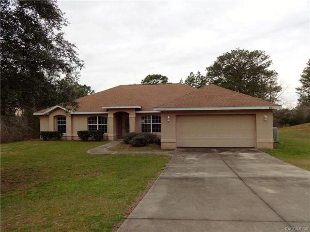 5920 SW 209th Avenue, Dunnellon, FL 34431 (MLS #780226) :: Plantation Realty Inc.