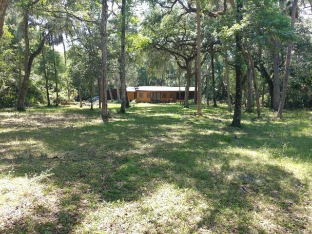 7096 N Spring Run Terrace, Hernando, FL 34442 (MLS #780327) :: Pristine Properties