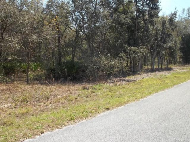 6525 N Flower Terrace, Hernando, FL 34442 (MLS #780547) :: Pristine Properties