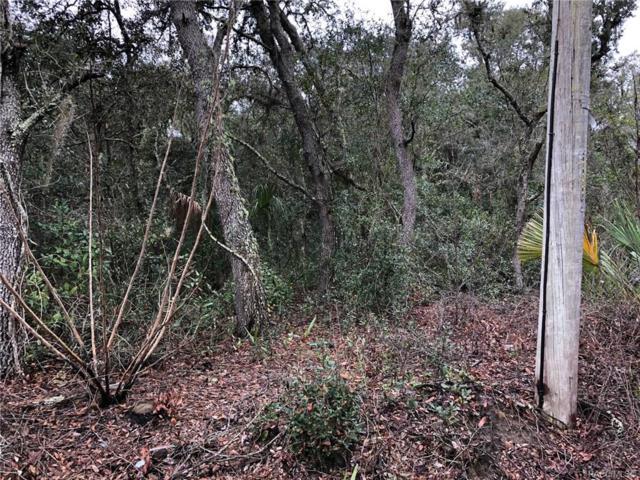 158 S Fitzpatrick Avenue, Inverness, FL 34453 (MLS #780590) :: Plantation Realty Inc.