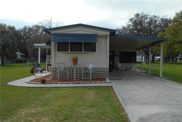 5130 S Florence Terrace, Floral City, FL 34436 (MLS #781237) :: Pristine Properties