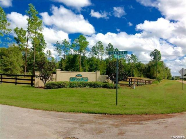 1820 W Oak Valley Court, Homosassa, FL 34446 (MLS #781512) :: Plantation Realty Inc.