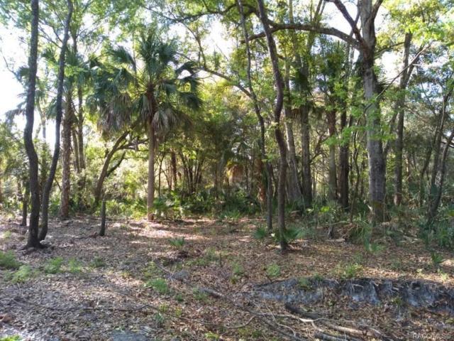 0 Moonlight Terrace N, Inglis, FL 34449 (MLS #781513) :: Plantation Realty Inc.
