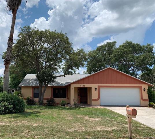 5688 W Irving Court, Homosassa, FL 34448 (MLS #781621) :: Plantation Realty Inc.