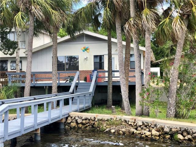 5260 Riverview, Homosassa, FL 34448 (MLS #781763) :: Plantation Realty Inc.