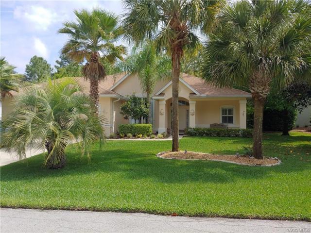 11 Plumbago Drive, Homosassa, FL 34446 (MLS #782062) :: Pristine Properties