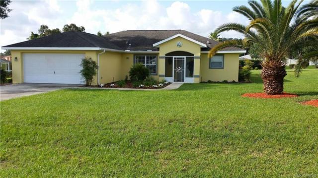 4602 E Van Ness Road, Hernando, FL 34442 (MLS #782181) :: Pristine Properties